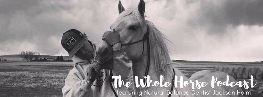 Episode 6 | Natural Balance Dentistry with Jackson Holm