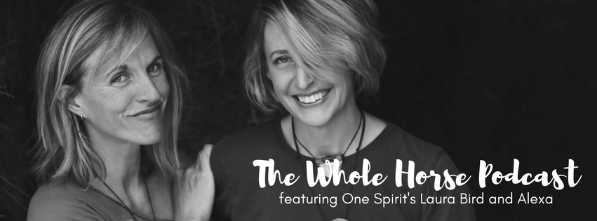Episode 23 | A cranio-sacral geek out with One Spirit's Laura Bird