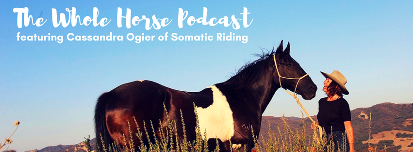 Episode 15 | Building bridges with Somatic Riding Founder Cassandra Ogier