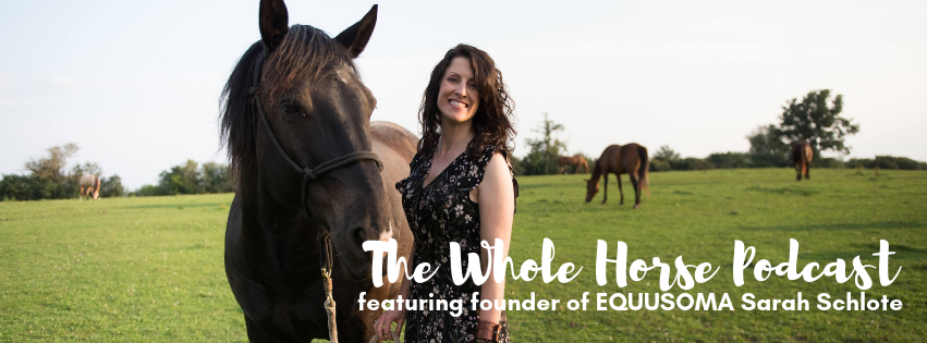 Episode 51 | Horse time from home with Sarah Schlote of EQUUSOMA
