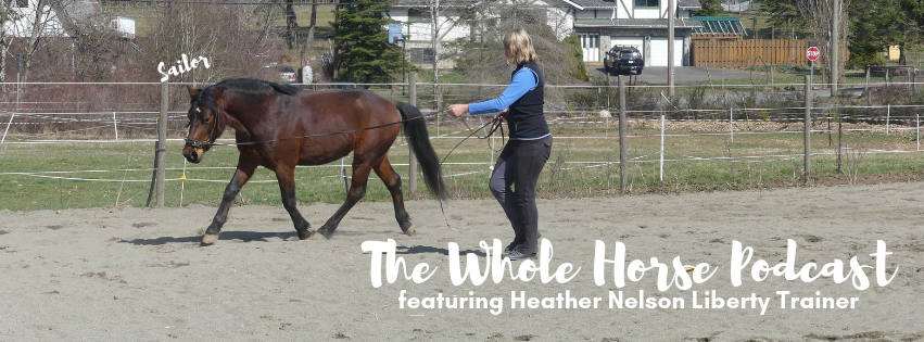 Episode 29 | Starting Sailor, a feral pony, with Heather Nelson Liberty Coach
