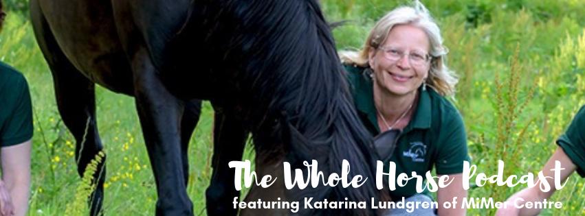 Episode 36 | Katarina Lundgren of MiMer Centre