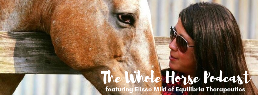Episode 38 – Cranial and endocrine geek-out with Elisse Miki
