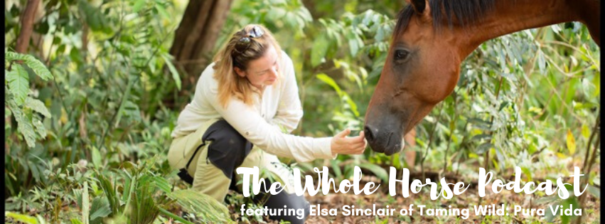 Episode 41 | Taming Wild + Restoring Trust with Elsa Sinclair