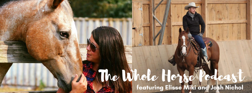 Episode 47 | Getting to the Heart of it with Elisse Miki and Josh Nichol