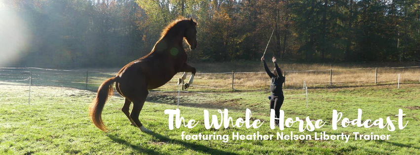 "Episode 52 | The training of ""magical unicorns"" with Heather Nelson"