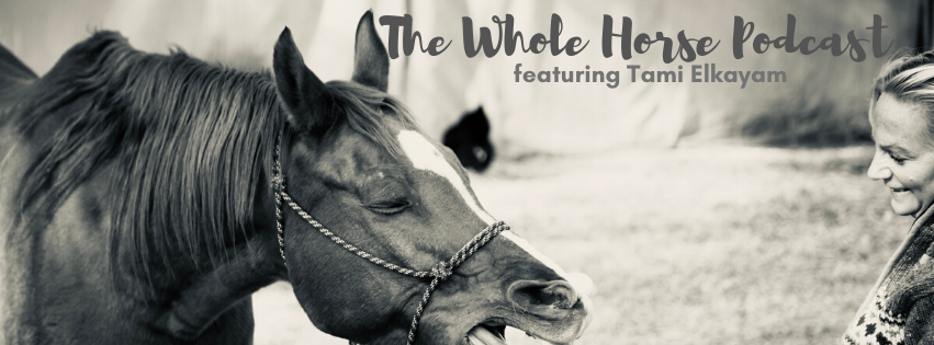 Episode 53 | Myofascial lines in horses and more with Tami Elkayam