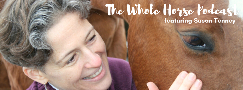 Episode 58 | Chinese Medicine and Acupressure for horses with Susan Tenney