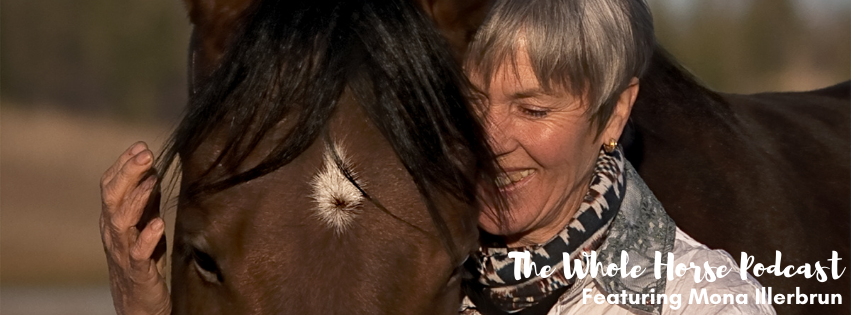 Episode 76 | Recovery through deep presence and horse connection with Mona Illerbrun